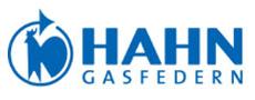 HAHN Gasfedern Logo